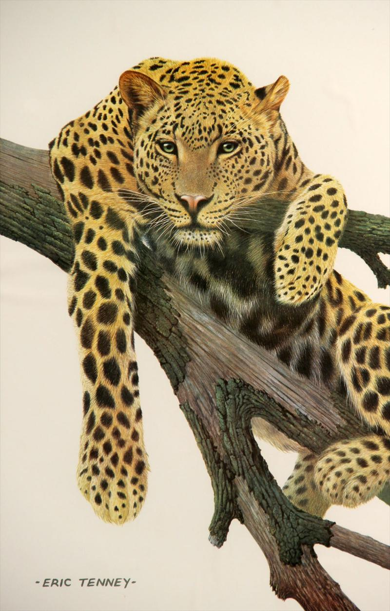 iGavel Auctions: Eric Tenney Animal Print, Leopard, 20th C ...