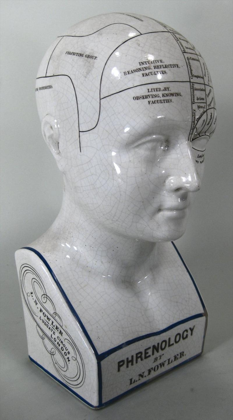 Igavel Auctions L N Fowler Porcelain Phrenology Bust